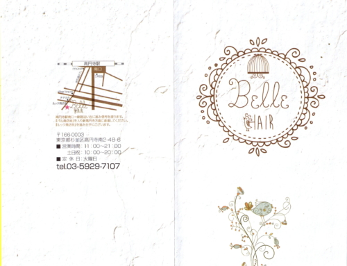 Belle hair design